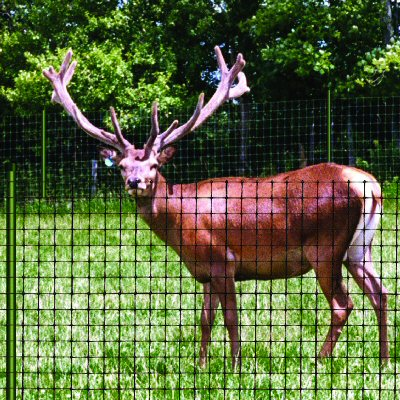 deer fences
